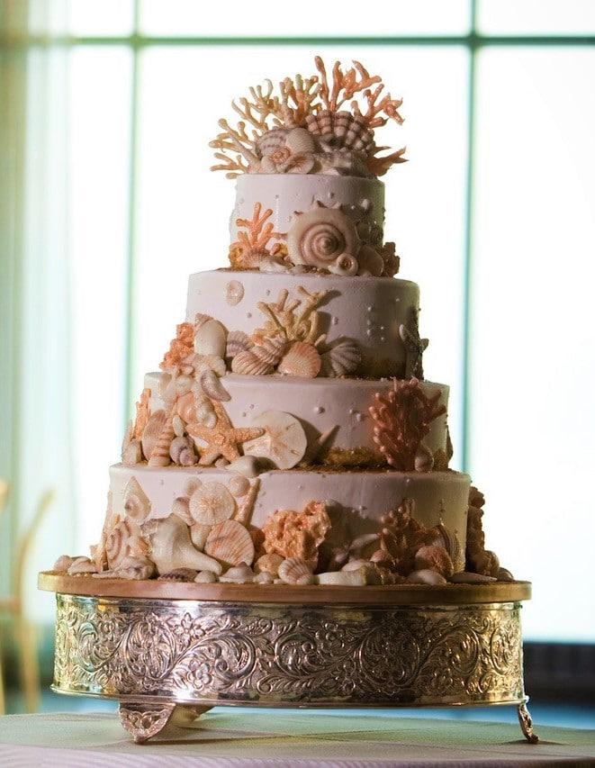 Chocolate Shells Cake - Wedding Cake