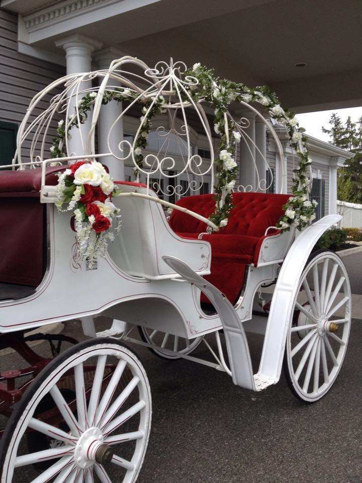 carriage img3 - 76 Carriage Company