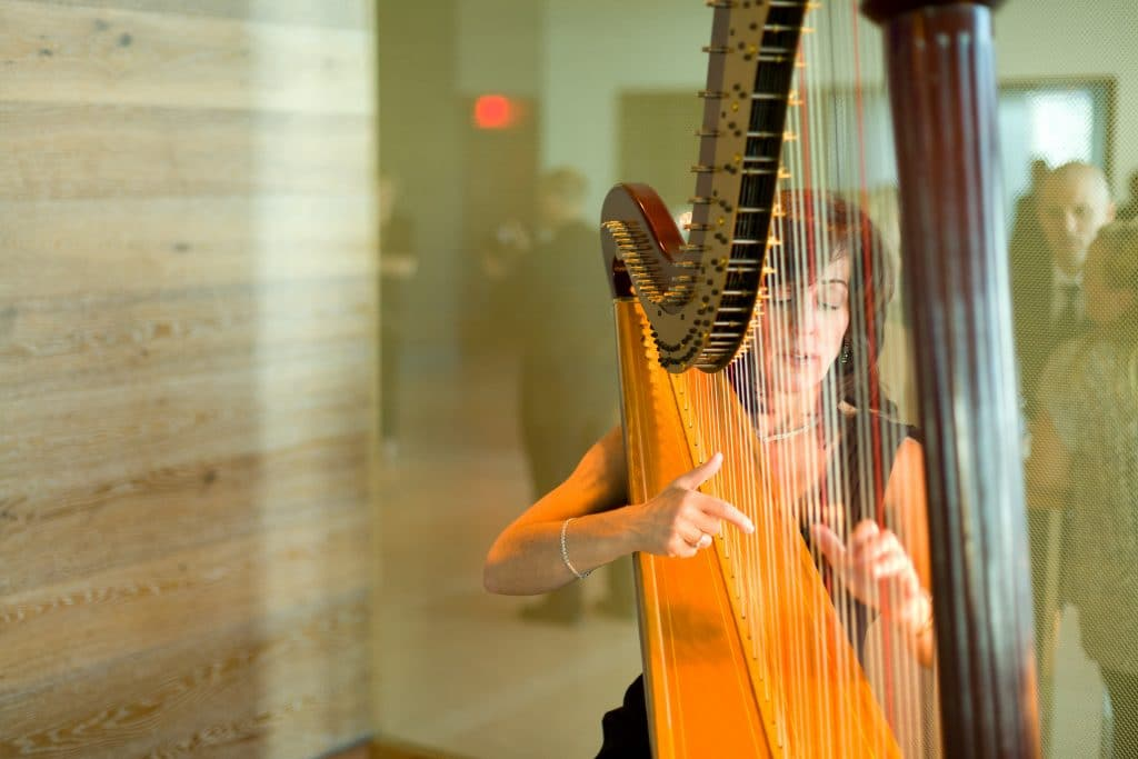 Harpist 1024x683 - Details